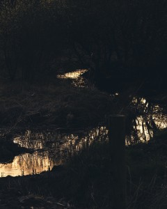 2_David_Copeland_a blanket of woven shadows-1 low res.jpg