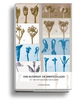 Blossfeldt_Arbeitscollagen_Cover_klein.jpg
