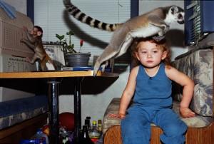 Amelias World and animal affinity by Robin Schwartz.jpg
